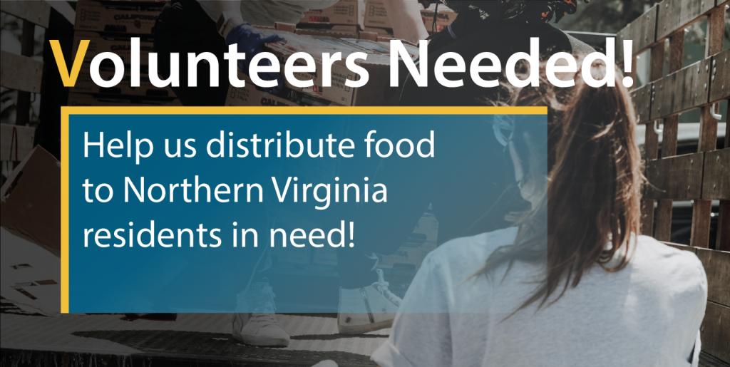 Food Distribution Volunteers
